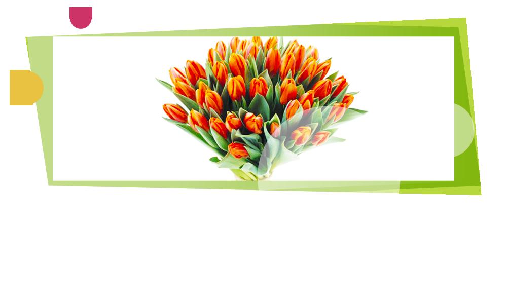 Découvrez nos compositions florales